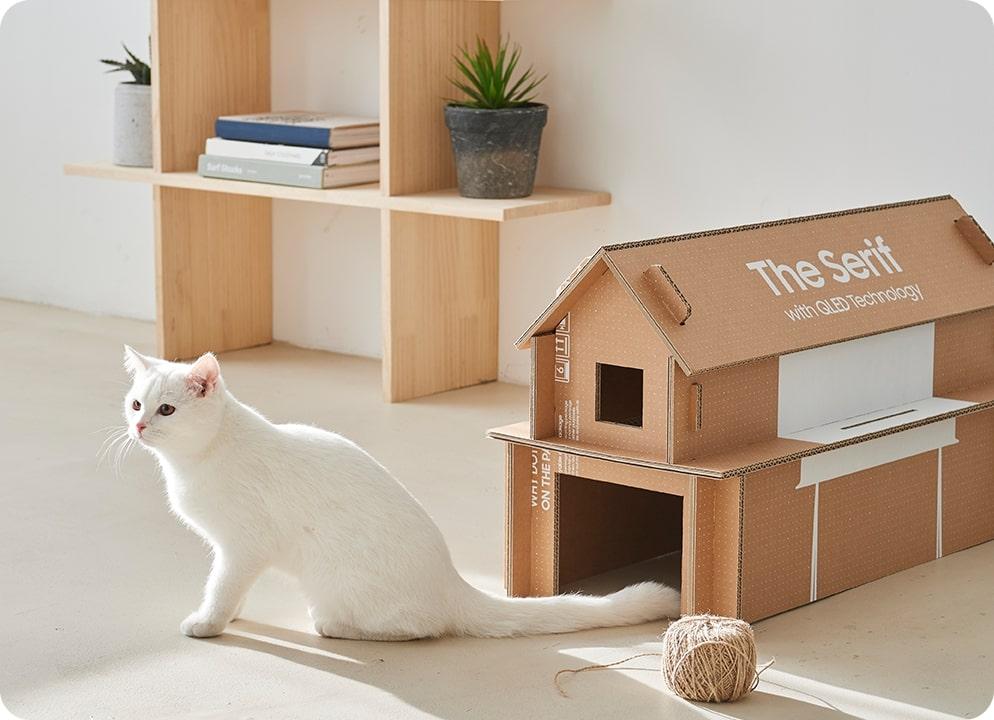 Samsung - Cat House